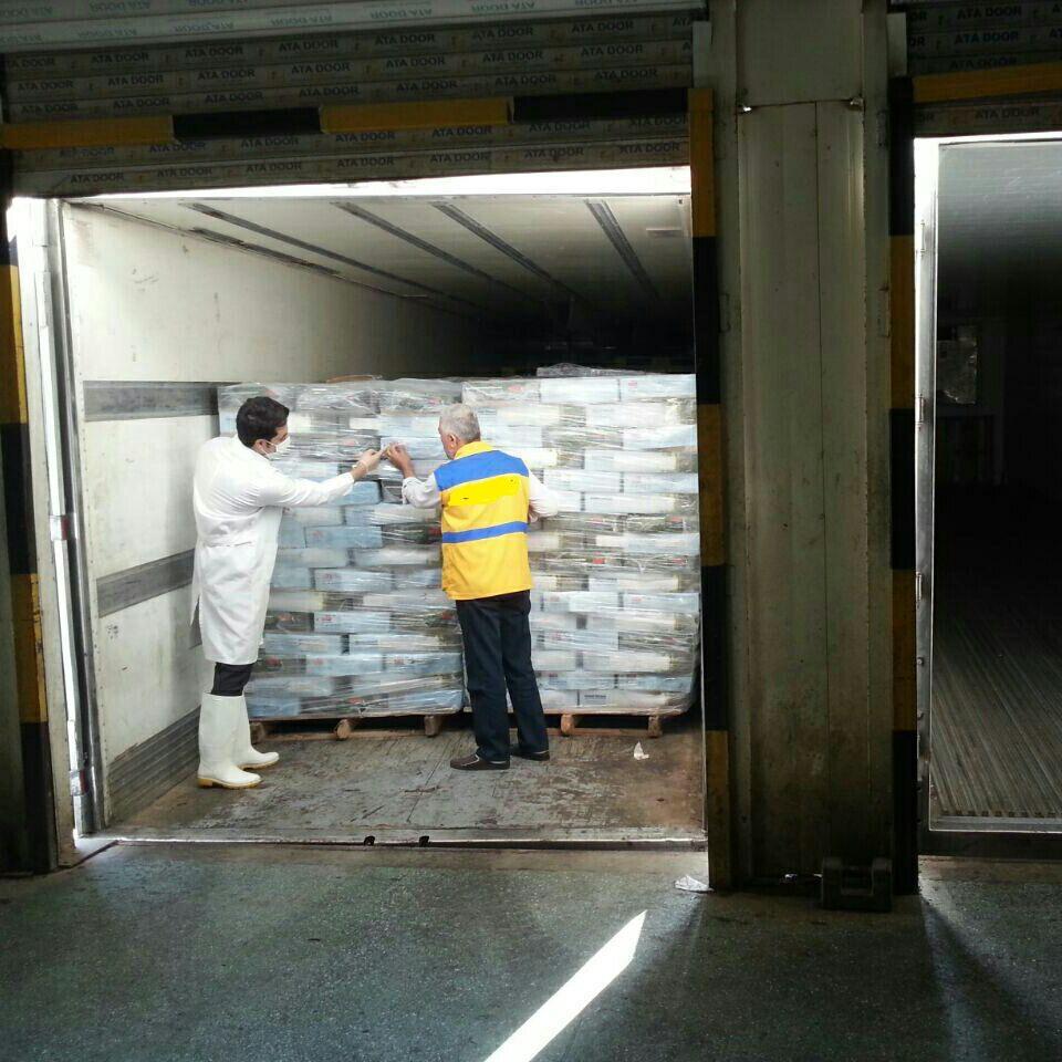 ۲۲۰۰ تن انواع فرآورده خام دام در گلستان صادر شد