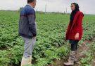 اولین سامانه ملی دیجیتال آموزش کشاورزی کشور راه اندازی شد