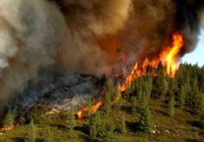 آتش سوزی های گسترده در اقسا نقاط کشور