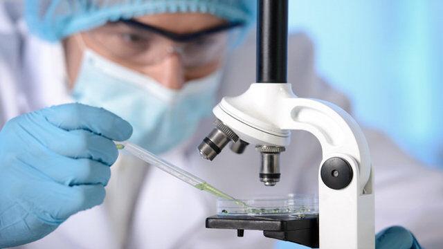 ۲۷۰۵بیمار جدید کووید۱۹شناسایی شدند