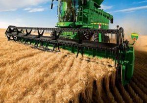 کاهش برداشت گندم نسبت به مشابه سال قبل