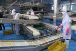 افزایش ۱۰۰ هکتار به مساحت شهرک صنعتی گنبدکاووس