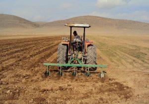 تامین۱۰هزار تن بذر کشت پاییزه کشاورزان