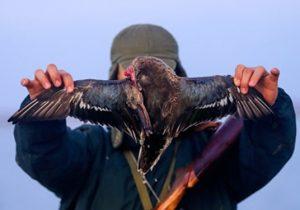 دستگیری ۴۲۶ متخلف شکار و صید در نیمه اول سال ۹۹