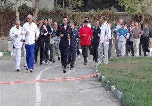 سلامتی شماتنها۳۰دقیقه پیادهروی روزانه چه کمکی می کند؟
