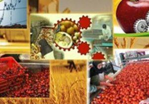 نبود صنایع تبدیلی در مراغه با تولید ۴۰۰ هزار تن میوه