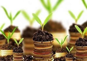 افزایش۲برابری سرمایه صندوق حمایت ازبخش کشاورزی