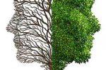 چرابرای موفقیت شغلی داشتن ذهنیت رشدضرورت است؟