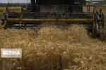 افزایش۲.۱میلیون تُن تولیدمحصولات کشاورزی