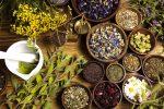 احداث شهرک صنعتی گیاهان دارویی غیردولتی در استان اردبیل