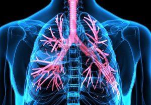 خوراکیهایی که موجب بهبود سلامت ریه اند