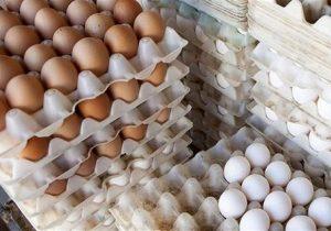 در ماهرمضان کمبودتخممرغ نداریم