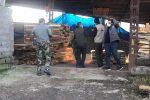 مقابله شدید با قاچاق چوب جنگلی در مازندران