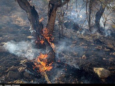 مهارآتش سوزی جنگلهاومراتع منطقه شاهبهرامباشت