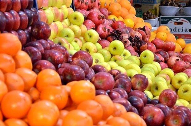 آغاز توزیع میوه تنظیم بازار عید در سیستان و بلوچستان